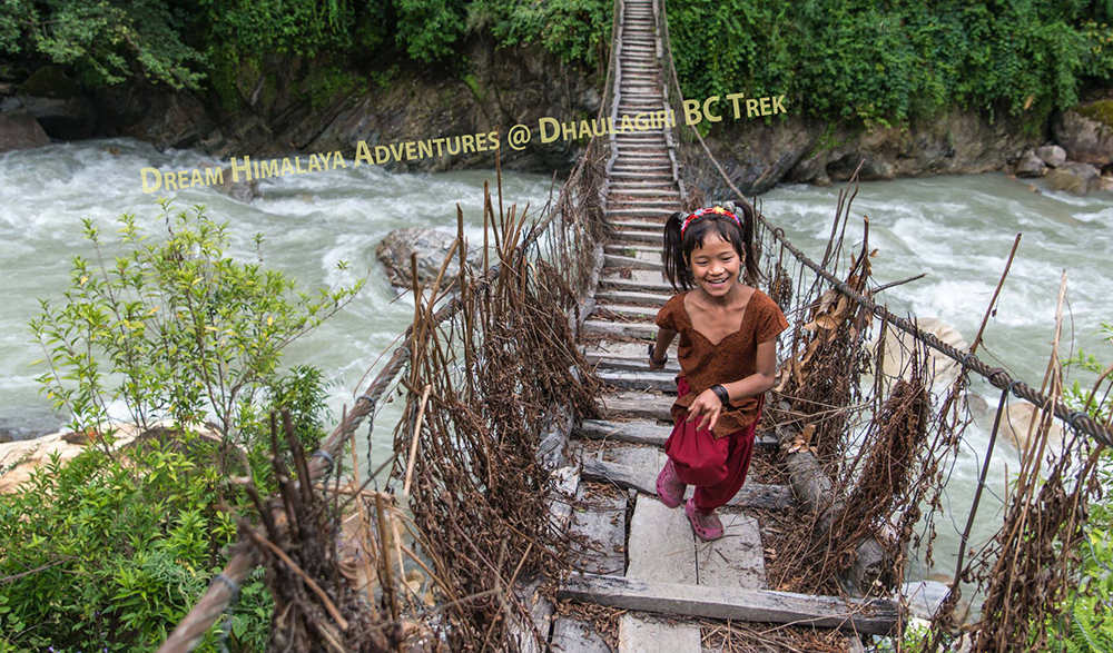 Wooden bridge Dhaulagiri trekking