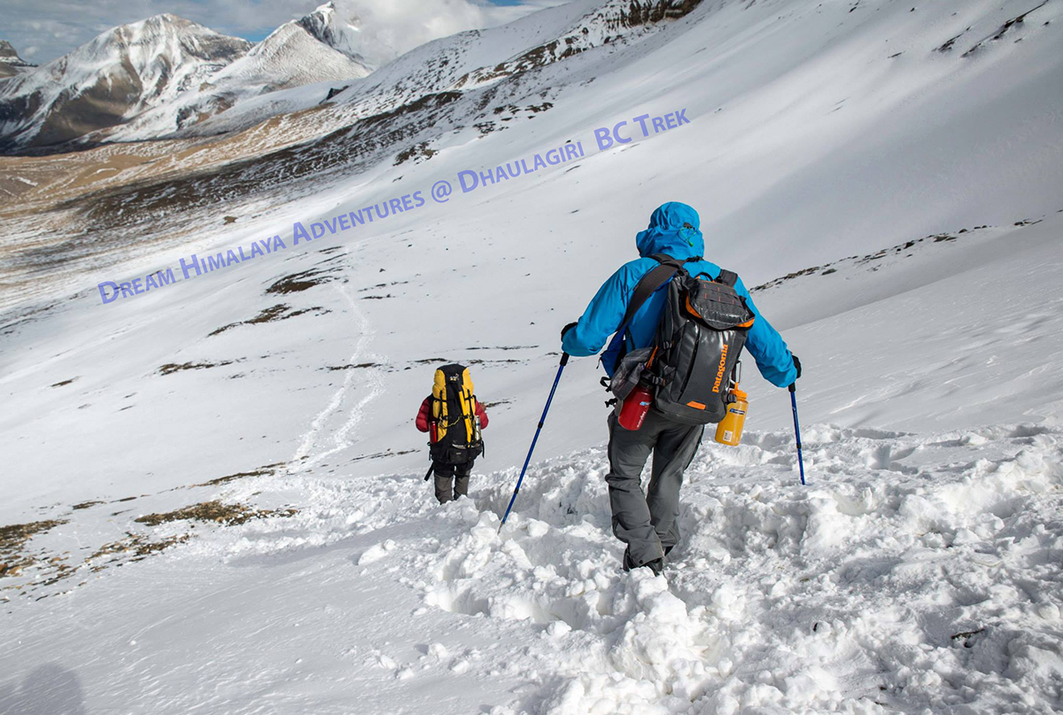 Snow path Dhaulagiri Trek