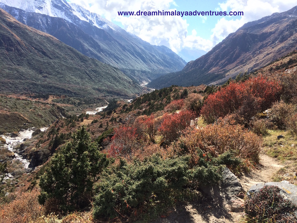 view in Kanchenjunga circuit trek